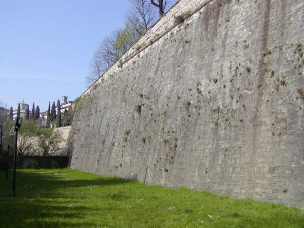 Mura foto